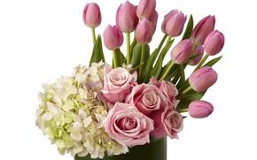 Картинка цветы, розы, сирень, гортензия, букеты, композиции