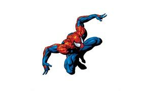 Картинка супергерой, Человек-паук, Spider-Man