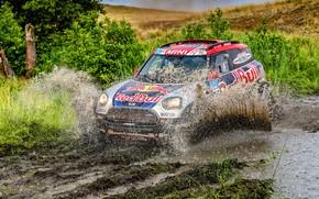Картинка Mini, Спорт, Пустыня, Скорость, Гонка, Грязь, Брызги, Rally, Внедорожник, Ралли, 105, X-Raid Team, MINI Cooper, …