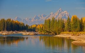 Картинка осень, деревья, горы, река, Вайоминг, США, Гранд-Титон