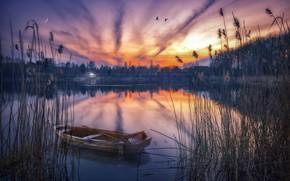 Обои природа, закат, лодка, озеро, камыш