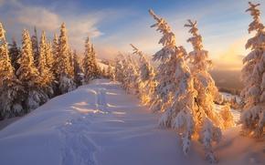 Картинка закат, пейзаж, небо, рассвет, тропинка, лыжня, мороз, снег, свет, лучи, мороз и солнце день чудесный, …
