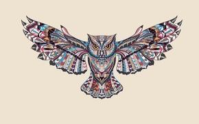 Картинка сова, птица, краски, крылья, светлый фон, owl