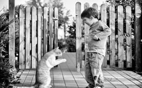 Картинка кот, забор, ребенок, мальчик, чёрно - белое фото