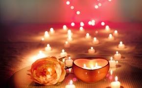 Картинка цветок, праздник, роза, свечи, боке