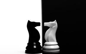 Картинка фигура, контраст, конь, шахматы