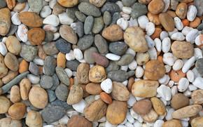 Картинка пляж, галька, камни, фон, white, белые, beach, texture, marine, морские, pebbles