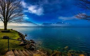 Обои облака, трава, небо, ступеньки, озеро, берег, деревья, туман, горы, лестница, камни, Швейцария, Thun