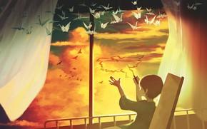 Картинка небо, птицы, мальчик, больница, оригами