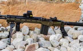 Обои оружие, винтовка, weapon, custom, rifle, M1A, M14, marksman, Blackfeather