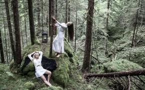 Картинка лес, ситуация, фонарь, две девушки