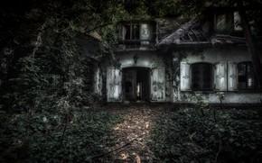 Обои лес, дом, мрак