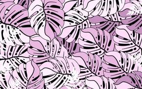 Картинка фон, текстура, листочки, Background, Leaves