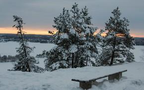 Картинка зима, лес, небо, снег, деревья, закат, дома, вечер, лавочка, сугробы, сумерки, Финляндия, Tampere