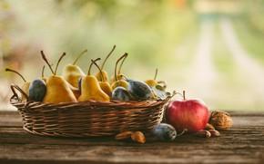Картинка яблоки, фрукты, орехи, натюрморт, сливы, груши