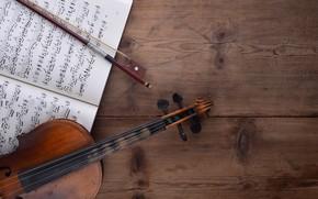 Обои ноты, фон, скрипка, мызыка