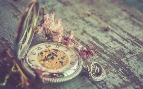Картинка цветы, ретро, фон, часы