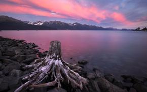Картинка закат, озеро, берег