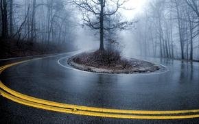 Картинка дорога, туман, Деревья, поворот