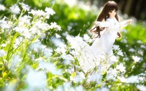 Картинка цветы, настроение, игрушка, кукла