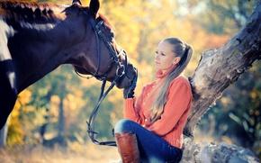 Картинка осень, девушка, солнце, дерево, лошадь, джинсы, сапоги, прическа, блондинка, перчатки, свитер, боке
