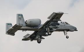 Обои оружие, летит, A-10 Thunderbolt II, боевой самолёт