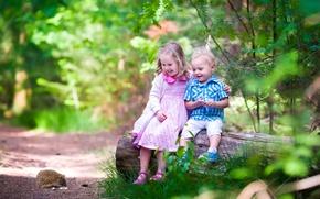 Картинка лес, деревья, радость, дети, мальчик, маленькие, девочка, ежик, бревно, forest, друзья, children