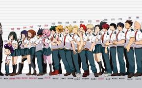 Картинка девушки, класс, парни, персонажи, Boku No Hero Academia, Моя геройская акадеимя