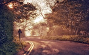 Картинка дорога, свет, утро