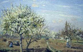 Картинка деревья, пейзаж, картина, весна, Камиль Писсарро, Сад в Цвету. Лувесьен