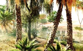 Картинка природа, Ubisoft, Assassin's Creed