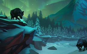 Картинка Минимализм, Minimalism, The Long Dark, Indie game