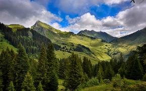 Картинка облака, деревья, горы, Франция, долина, леса, луга, Mieussy