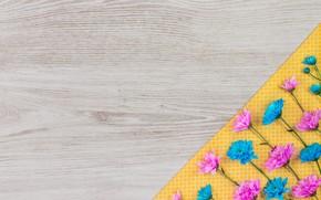 Картинка цветы, фон, ткань, хризантемы