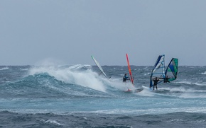 Обои море, волны, ветер, парус, доска, регата, виндсёрфинг
