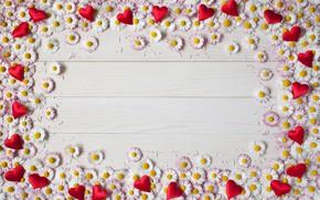 Обои праздник, сердечки, хризантемы