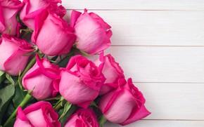 Картинка цветы, розы, букет, розовые, бутоны, pink, flowers, roses, bud