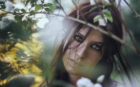 Картинка глаза, девушка, лицо, фон, модель