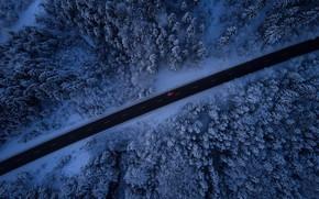 Картинка зима, дорога, машина, лес, снег, деревья, вид сверху