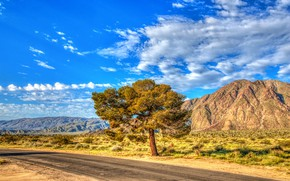 Картинка дорога, небо, солнце, облака, дерево, холмы, HDR, Калифорния, США, кусты, Anza-Borrego, State Park