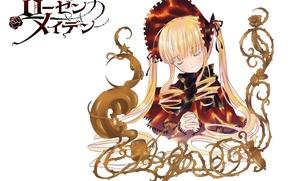 Картинка кукла, белый фон, длинные волосы, молитва, закрытые глаза, девы розена, Rozen Maiden, пелерина, капор, Shinku, …