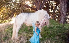 Картинка лошадь, фея, единорог, девочка