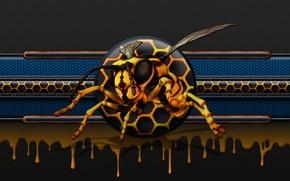 Картинка пчела, соты, honey, мёд, glow, bee, drip