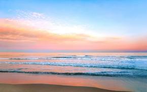 Картинка море, океан, берег, вечер