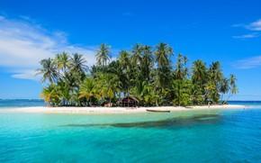 Картинка тропики, океан, остров