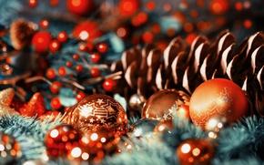 Картинка шарики, макро, праздник, шары, игрушки, шишка, разные