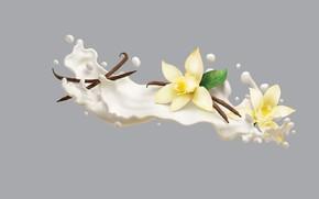 Обои Philadelphia VIVA Protein Smoothies, AJ Jefferies, арт, сливки, ваниль, минимализм