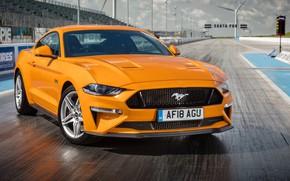 Картинка оранжевый, Ford, Fastback, 2018, Mustang GT