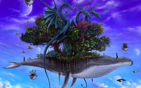 Картинка животные, растительность, планета, drei drachen kontrast kleiner, Dragons on Whales
