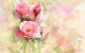 Картинка цветок, цветы, фон, рисунок, графика, роза, розы, обработка, светлый, картина, арт, розовые, живопись, бутоны, нежно, …